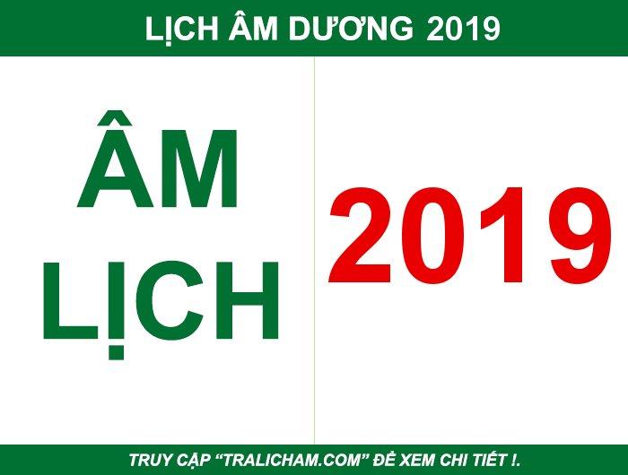 Diễn biến năm Kỷ Hợi 2019